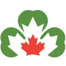 Ireland Canada Chamber of Commerce Ottawa (ICCCOTT) logo