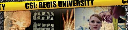 8th Annual CSI Program, November 15th & 16th (2013)