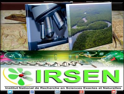 IRSEN Mrsit  logo