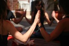 Healing Touch Vinyasa logo