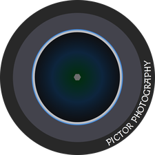 PICTOR PHOTOGRAPHY logo