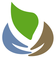 Niagara Sustainability Initiative logo