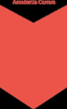 FONDAZIONE ACCADEMIA CARRARA logo