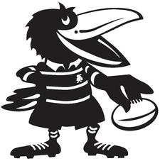 Souths Rugby Union Club Inc logo