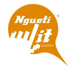 NGUETI IT SOLUTIONS logo