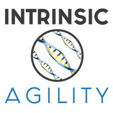 Intrinsic Agility, LLC logo