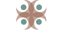 Health Wise Integrative Medicine logo