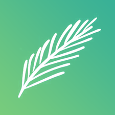Juniper & Teal  logo