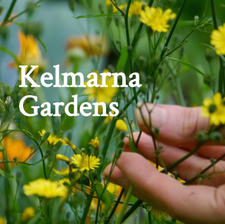 Kelmarna Community Gardens logo