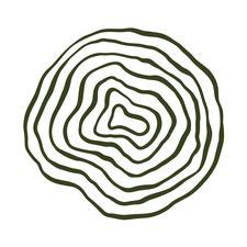 Cameron Ashley logo