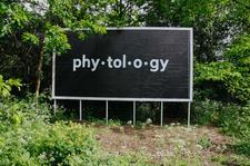 Phytology logo