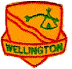 Wellington Area Service Team logo