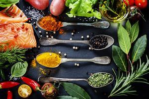 Food Technology Programme
