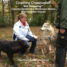 Jamie Chapman, Cofounder at Coaching Crossroads® and Plant Human Resource Leader at Plexus Manufacturing Solutions logo