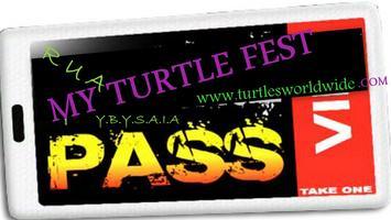 R U A Turtle...Turtle Fest 2012