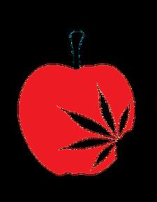 High NY logo