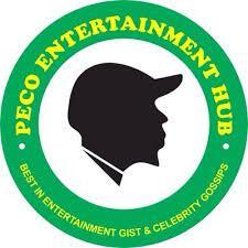 Peco Entertainment Hub logo