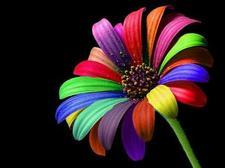 Rainbow Energy logo