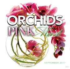 ORCHIDS Ent. Group logo