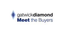 Gatwick Diamond Meet the Buyers logo