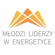 Młodzi Liderzy w Energetyce logo