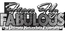 Gulf Coast Naturals & Natural Hair Parade logo