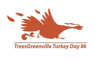 2013 TreesGreenville Turkey Day 8k Results