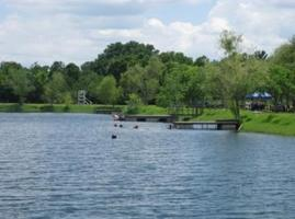 Divers and Kayakers Wanted for 288 Lake Hydrilla Clean...