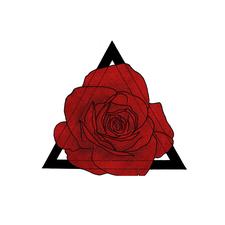 wildwithgrace logo