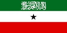 K. Noor logo