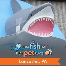 That Fish Place - That Pet Place logo