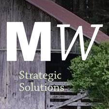 Mountain Willow Strategic Solutions logo