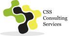 CSS Consulting Services Pte Ltd logo