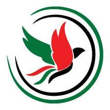 International Campaign for Freedom in the UAE logo