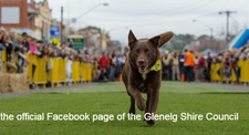 Tourism & Events - Glenelg Shire Council.  logo
