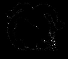 Women In Comedy logo