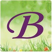 BRIMI Foundation, Inc. logo