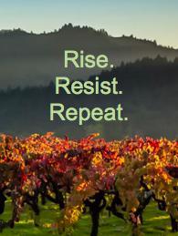 Sonoma Valley Resistance logo