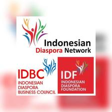 Partnership of IDN-G, IDBC, IDF, and IDN National Chapters logo