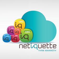 Netiquette Software logo