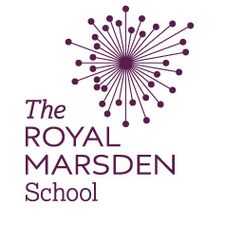 Royal Marsden School - Learning Enhancement Workshops logo