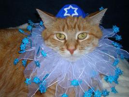 Queer Shabbat Thanksgivukkah Spectacular