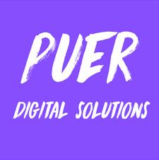 Puer Digital Solutions logo