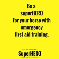 SuperHERO Equine First Aid International logo