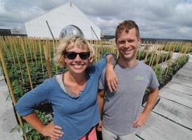 Rooftop Farming: Utilizing Unused Urban Space to Grow...