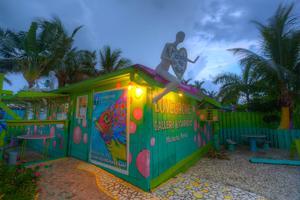 Matlacha Slow Art Day - Lovegrove Gallery & Gardens -...