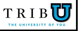 TribU: Holiday Baking