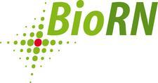 Biotech Cluster Rhein-Neckar (BioRN) logo