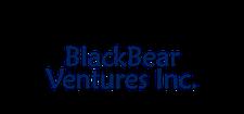 BlackBear Ventures Inc. / Bitcoin Academy / Remitano logo