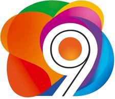 9 Elementos - Instituto de desenvolvimento humano logo